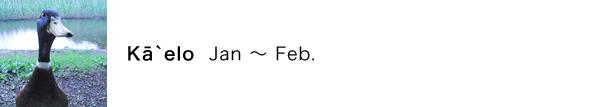 カー・エロ(Kā`elo)の月:1月〜2月