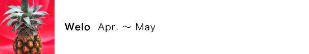 ウエロ(Welo)の月:4月〜5月