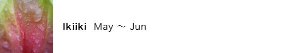 イキイキ(Ikiiki)の月:5月〜6月